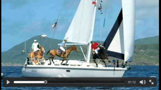 Polo_horse_on_boat