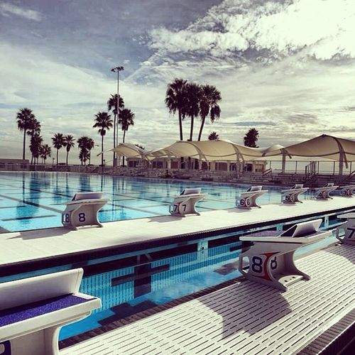 Saying Good Bye To The Belmont Plaza Olympic Pool Long Beach Ca The17thman