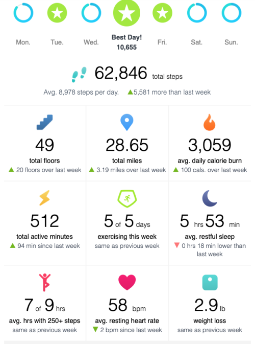 Fitbit_july27_aug2_2020